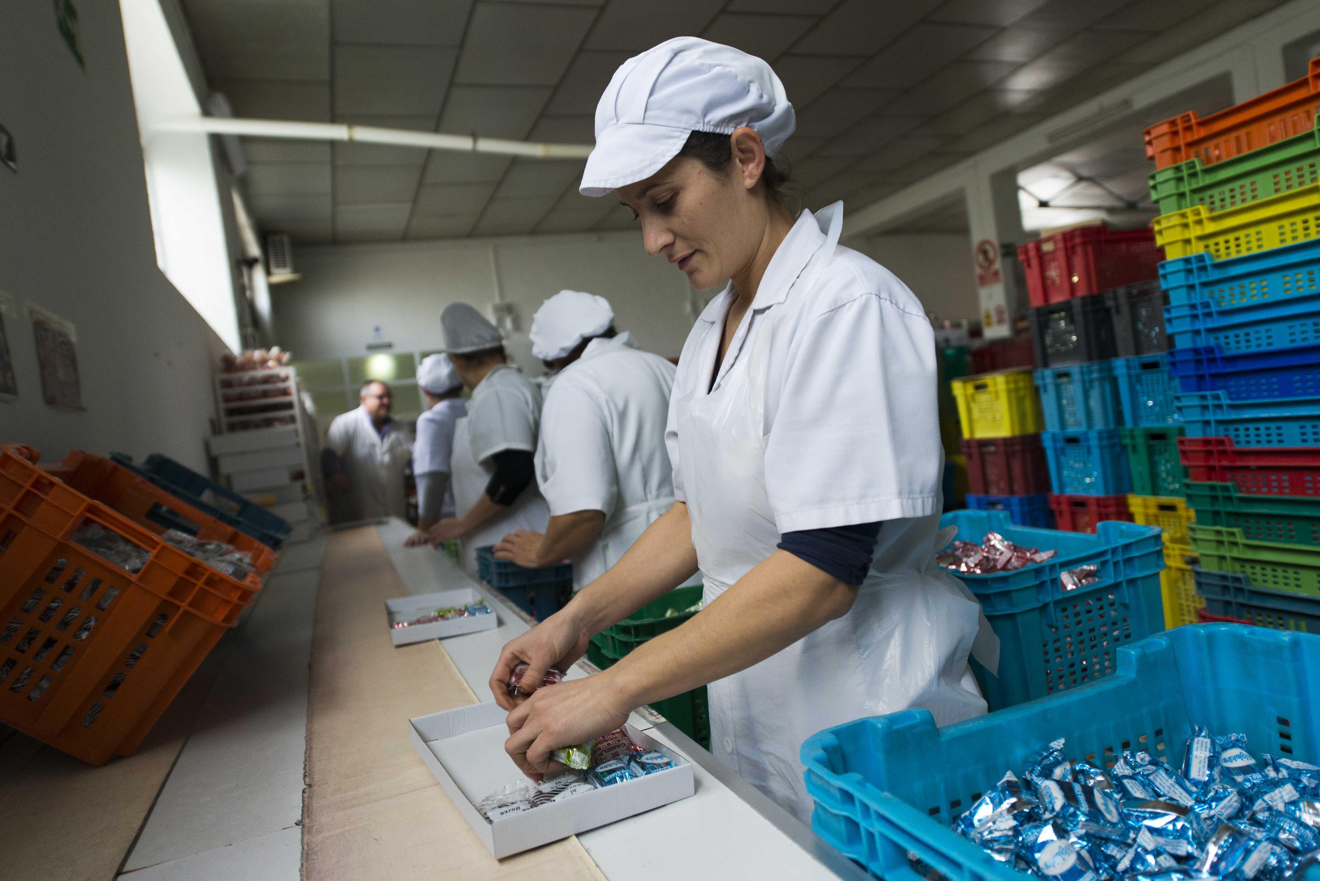 Sevilla 22 11 2014: Reportaje sobre jovenes agricultores y y jovenes preparando los matecados. Foto: J.M.Paisano